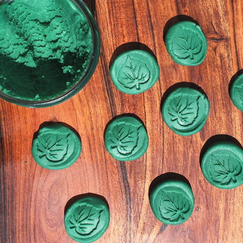 Forest Green Luxuriously Soft Playdough