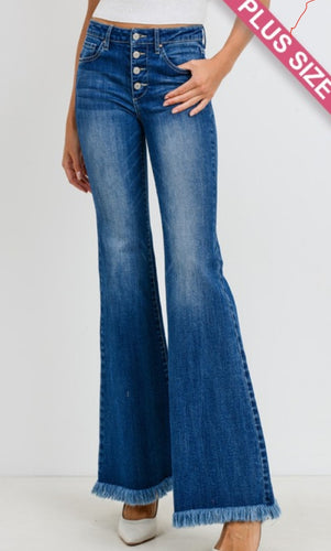 Four Button, High Waist Flare Jean's- Curvy