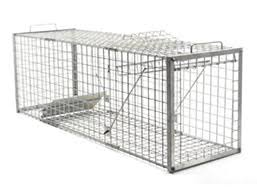 Fox Cage Trap - Live Catch