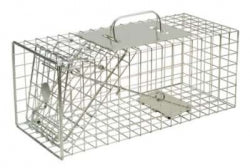 Squirrel Cage Trap - Live Catch