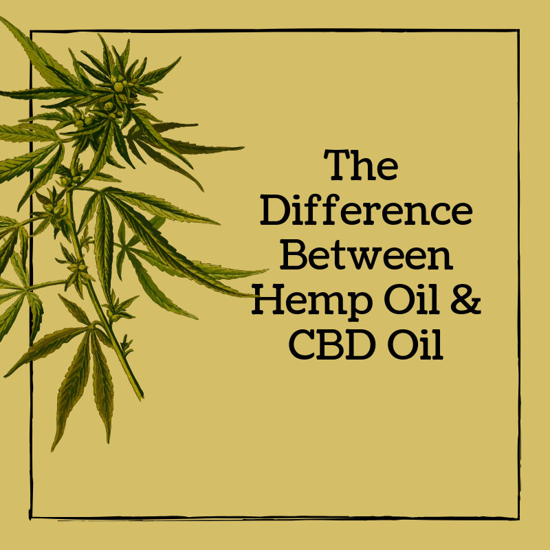 Hemp vs CBD  Is there a difference?