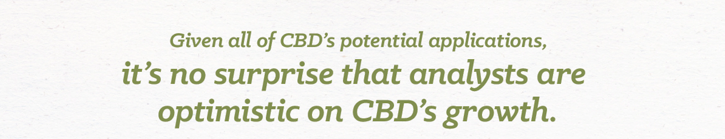 Benefits of CBD oil are growing