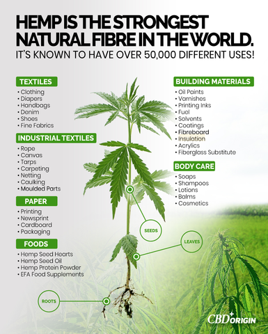 Benefits of hemp, uses of hemp