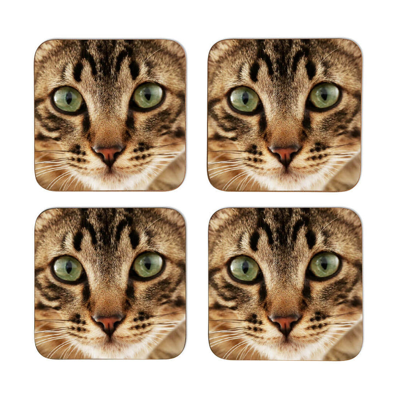 Cat Face Coasters