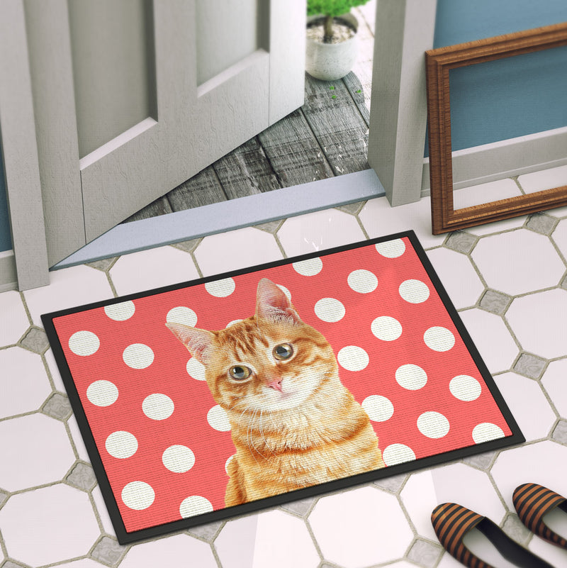Your Cat Door Mat