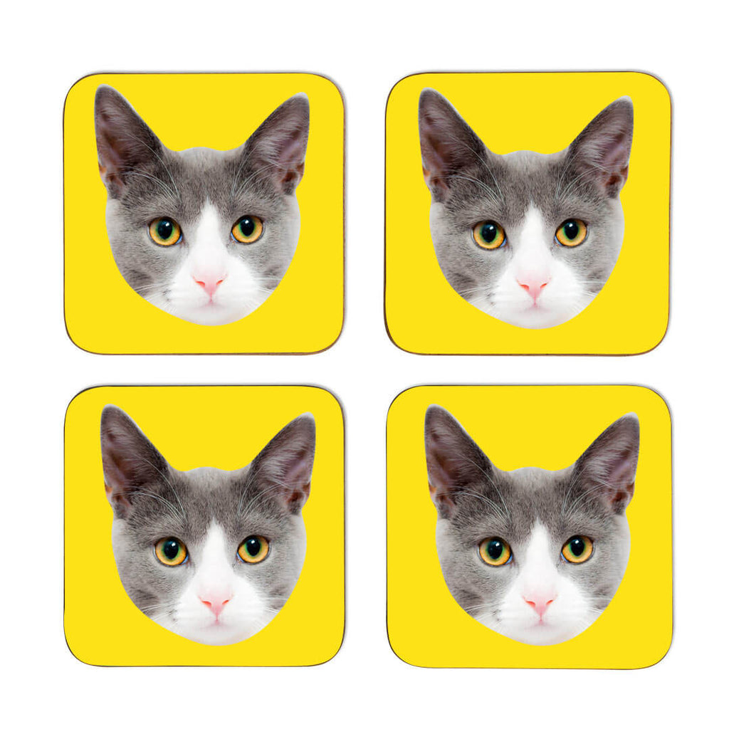Your Cat Coasters