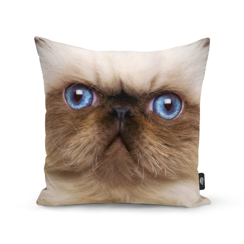 Your Cat Face Splat Cushion