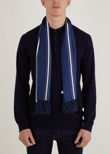 Load image into Gallery viewer, Benyon Stripe Scarf - Blue