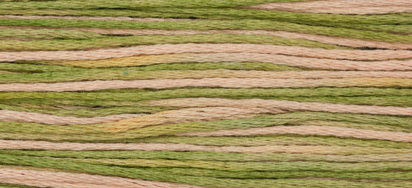 Weeks Dye Works 6 Strand Cotton - Foxglove 1141 - Pre Order