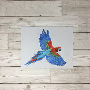 Parrot Painting Original Artwork