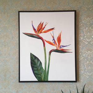 Bird of Paradise Original Artwork