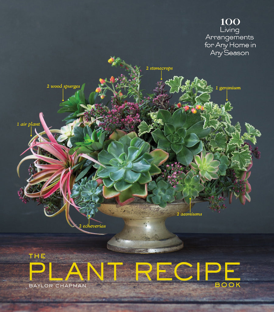 The Plant Recipe by Baylor Chapman