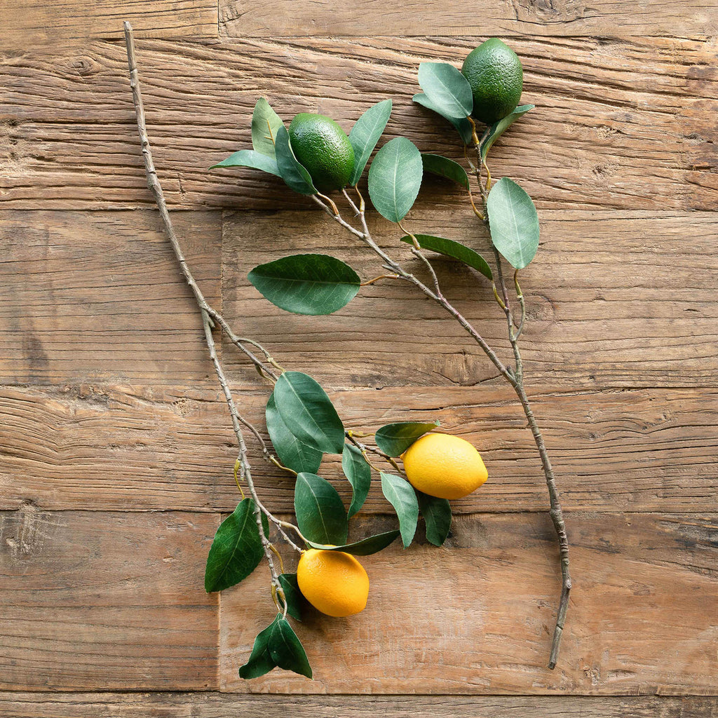 Citrus Branch Lemon