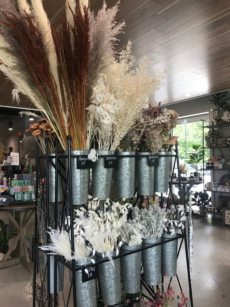 Dry Bar Flowers and Stems