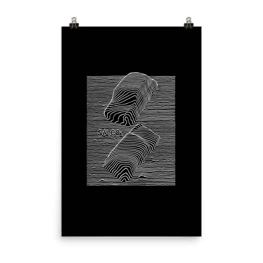 Unknown Pleasures Poster