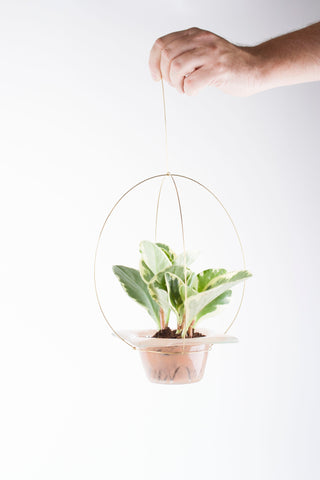 Flying Plant Pot