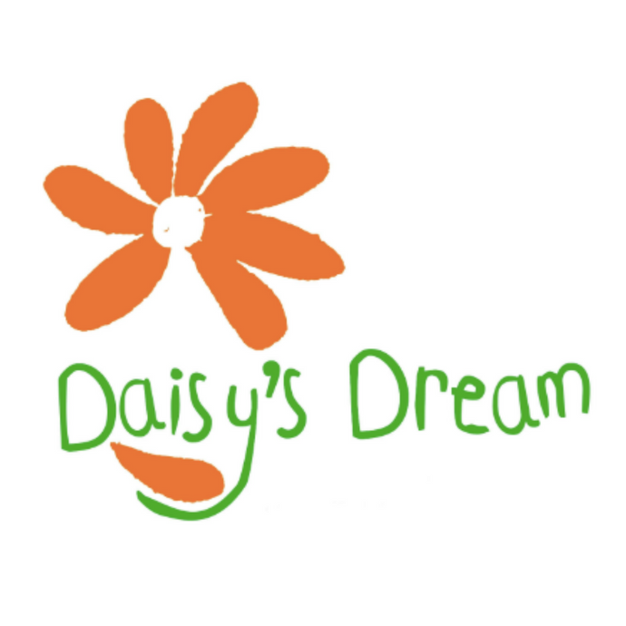Daisy's Dream Christmas Pudding Campaign