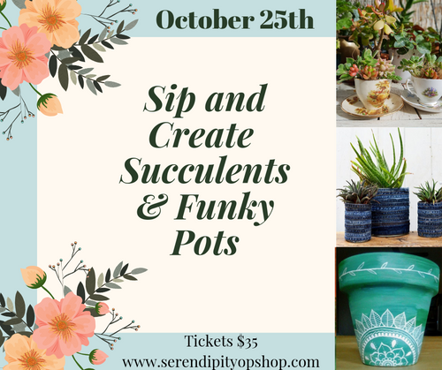 SIP AND CREATE - 25TH OCTOBER - SUCCULENTS & FUNKY POT PLANTS BACK DUE TO POPULAR DEMAND!