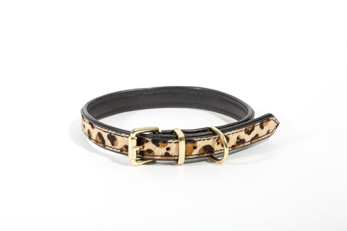 Delores Collar - Dog Collar - Stoned & Waisted Fashion