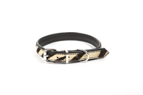 Dallas Collar - Dog Collar - Stoned & Waisted Fashion
