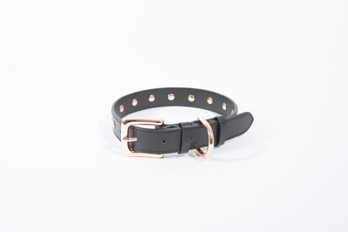 Rocker Stud Collar - Dog Collar - Stoned & Waisted Fashion