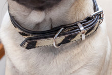 Load image into Gallery viewer, Dallas Collar - Dog Collar - Stoned & Waisted Fashion