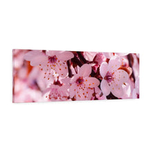 Load image into Gallery viewer, Cherry Blossom Canvas Gallery Wraps