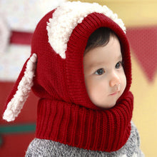 Load image into Gallery viewer, Winter Berry Wool Hood