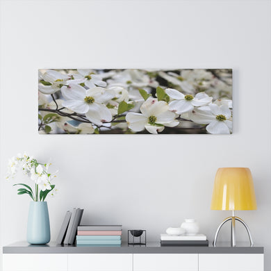 Jersey Dogwood Canvas Gallery Wraps