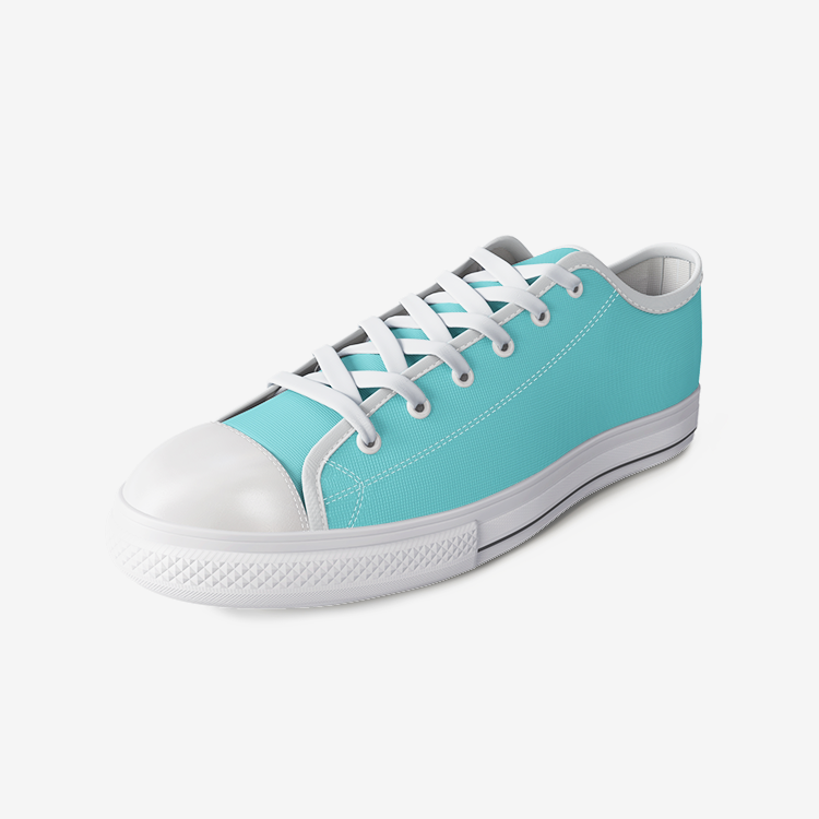 Lena Hudson Yards Urban Low Top Canvas Shoes