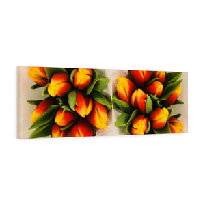 Dutch Peach Tulips Canvas Gallery Wraps