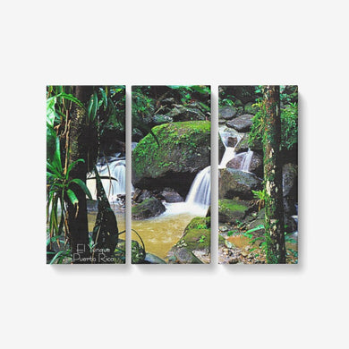 El Yunque Rain Forest  PuertoRico 3 Piece Canvas Wall Art for Living Room - Framed Ready to Hang 3x8
