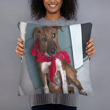 Load image into Gallery viewer, Myla Family Pet Basic Pillow