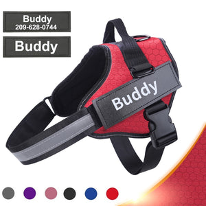 New Personalized Dog Harness
