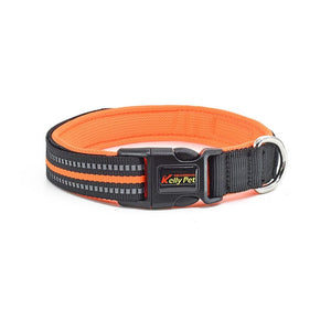 Heavy Duty Adjustable Nylon Dog Collar with Buckle