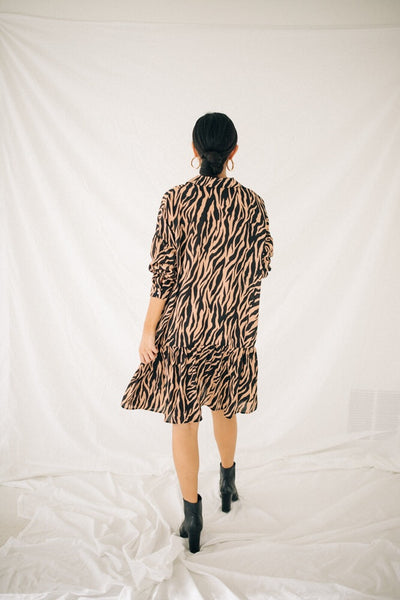 Zebra Me Crazy Dress
