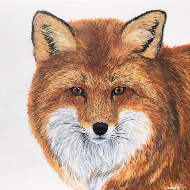 Foxy- Shannon Marie Schacht