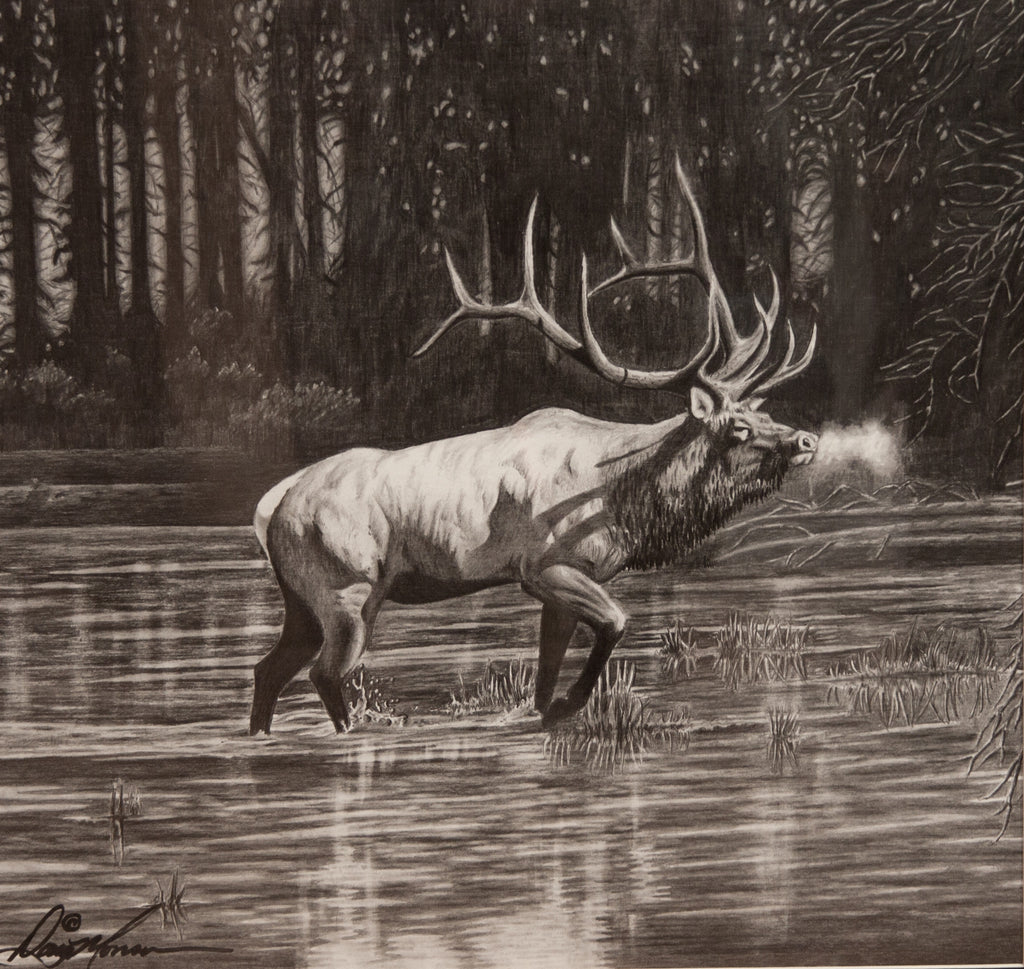 Madison River Bull by Doug Monson