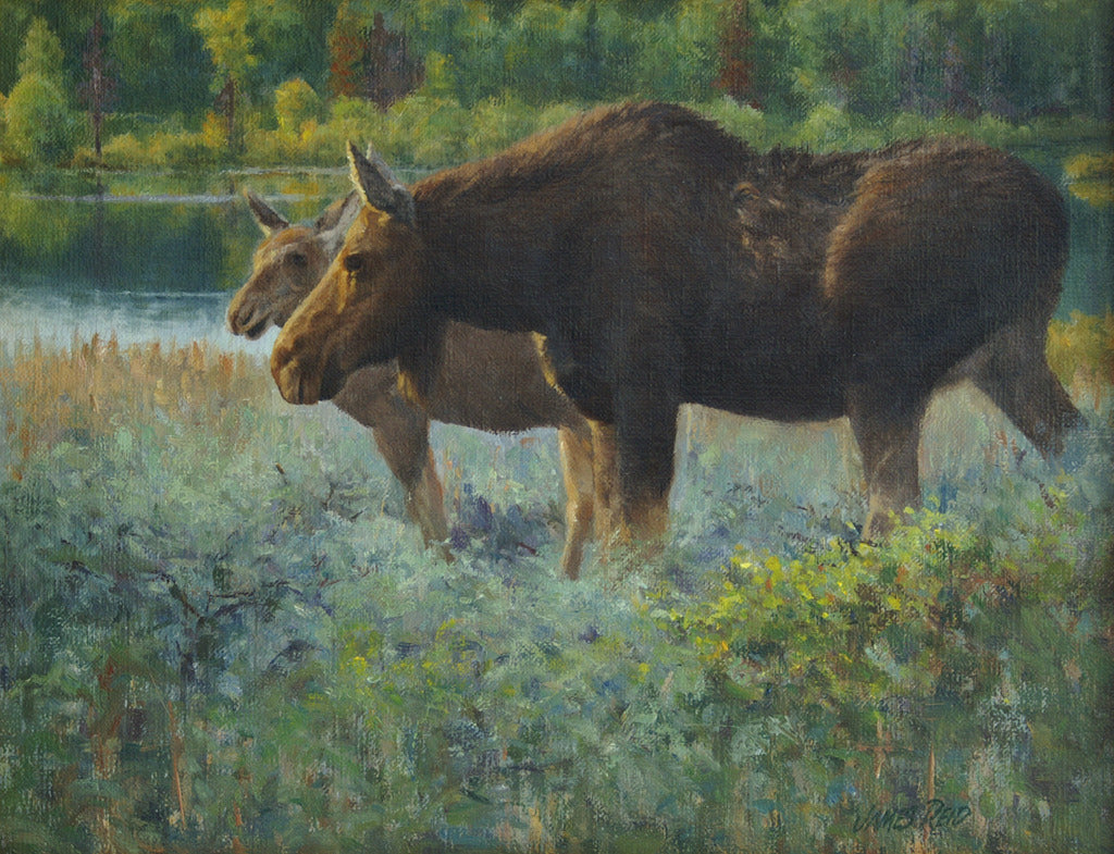 Moose Cow with Calf by James Reid