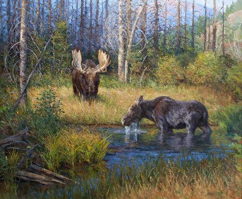 Moose Near Wilson Road by James Reid
