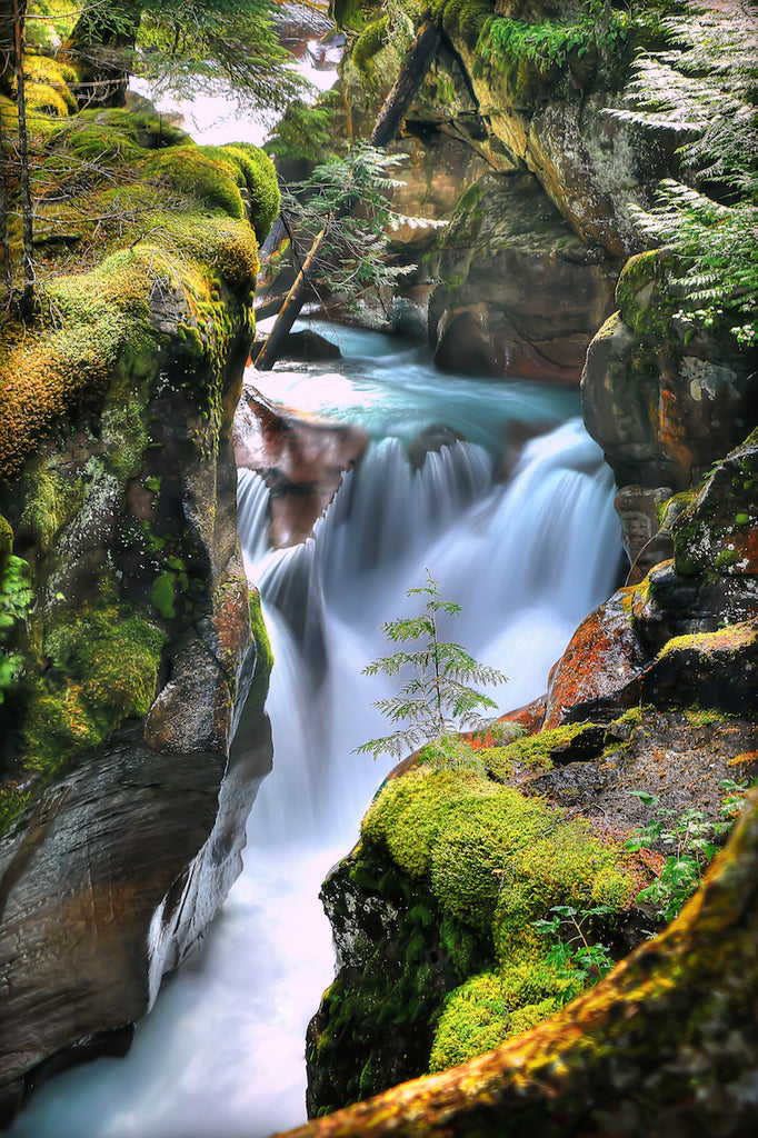 mountain stream landscape photograph for sale