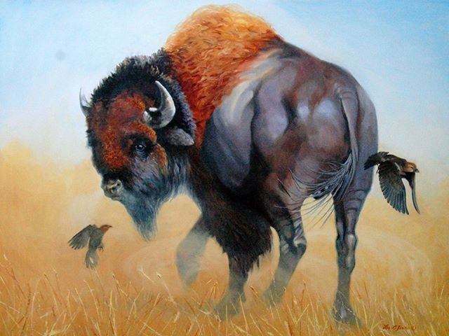 Turning on a Dime -buffalo painting - by Les Lefevre