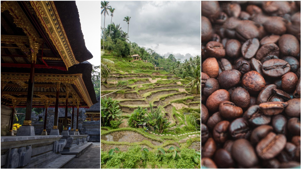 BALI: Diverse Culture, Natural Wonders & Aromatic Coffee