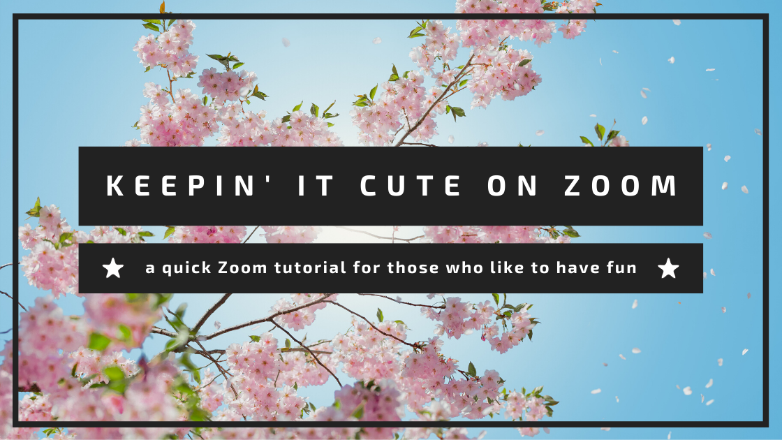 Zoom Tutorial Blog