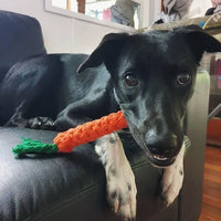 Carrot shaped chew toy
