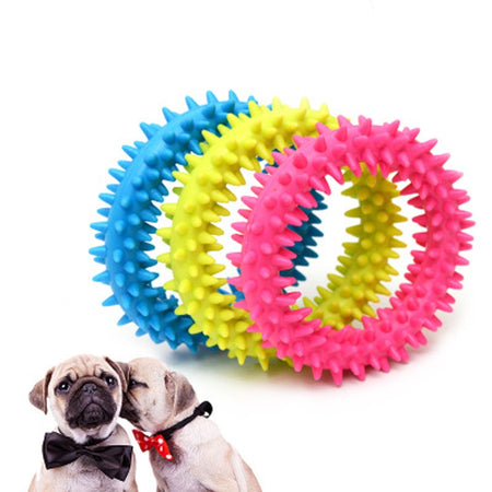 Resistance chew toys - The Wiggle Project