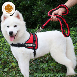 Reflective service dog harness - The Wiggle Project