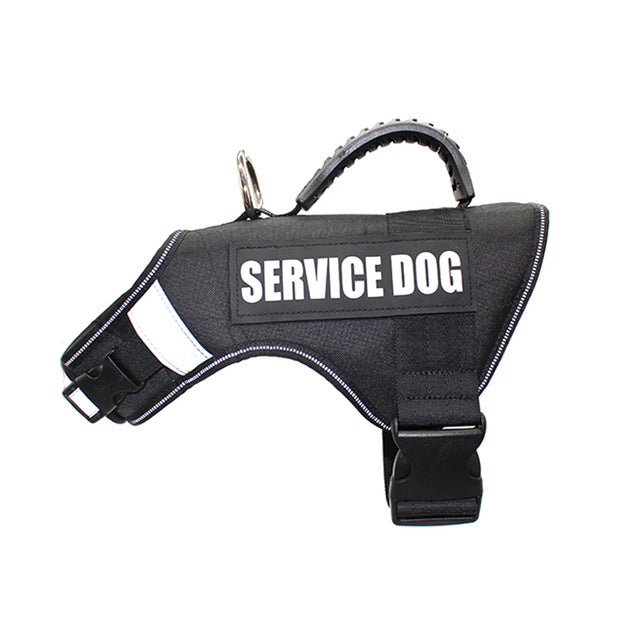 Service dog harness - The Wiggle Project