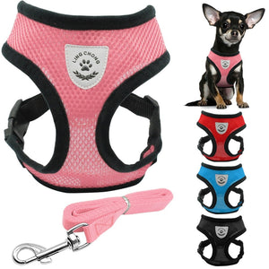 Breathable mesh harness and leash optional set