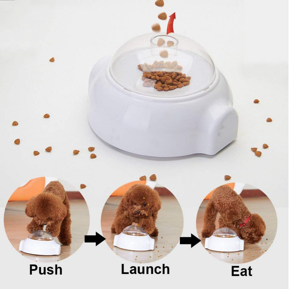 Interactive dog feeder